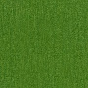 GREEN APPLE GB03