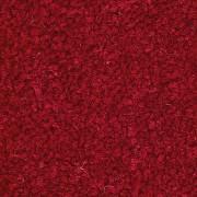 RED BT01